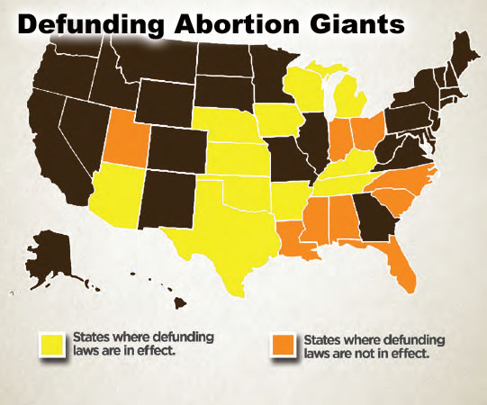 Defunding abortion giants